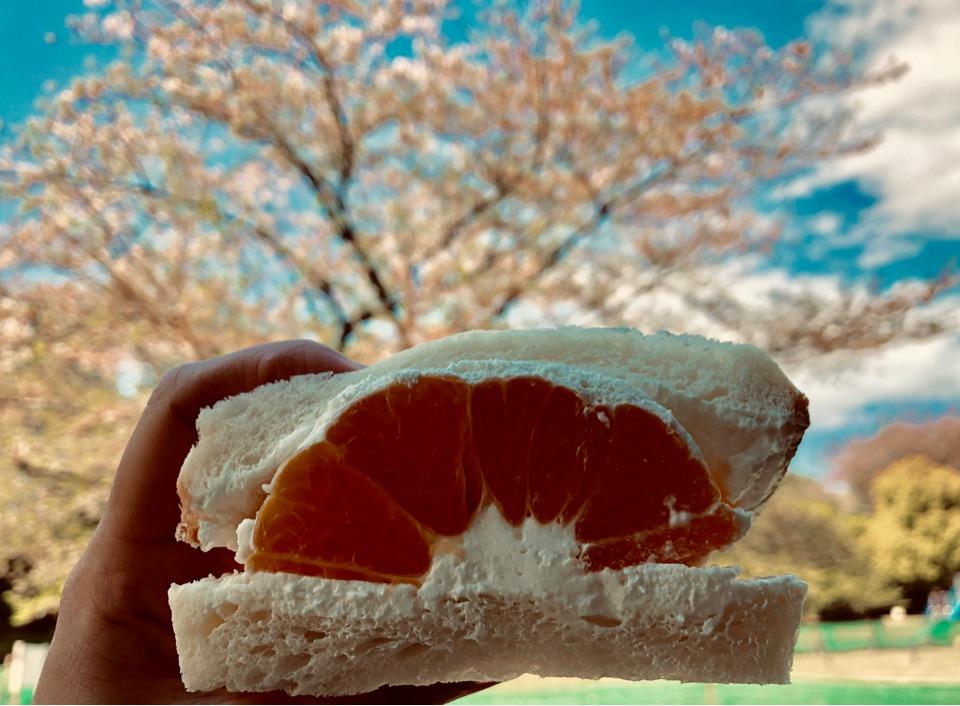 【代官山・中目黒】フツウニフルウツのフルーツサンド♡